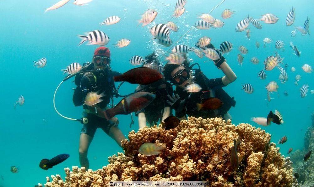 潜水蛙人与海底小鱼图片