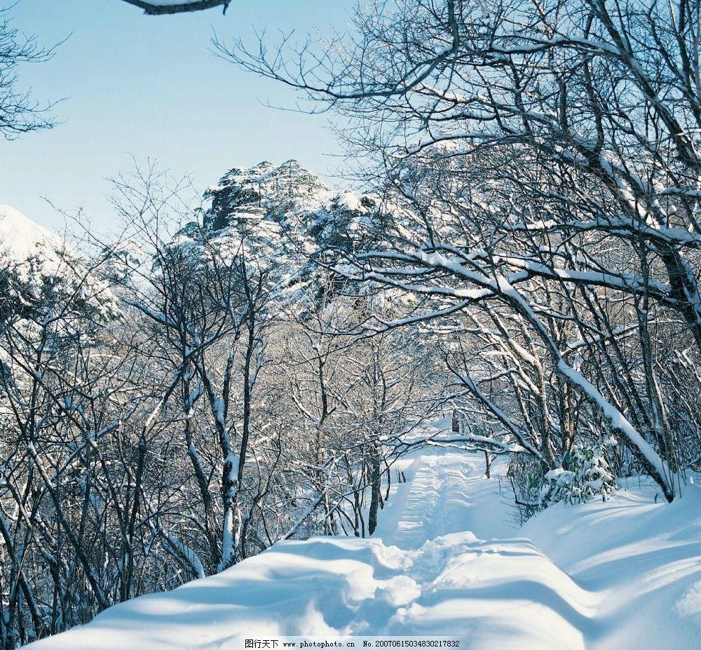 冰天雪地 银装素裹 雪景图片 冰雪图片 雪景壁纸 雪景桌面 冬天的照片