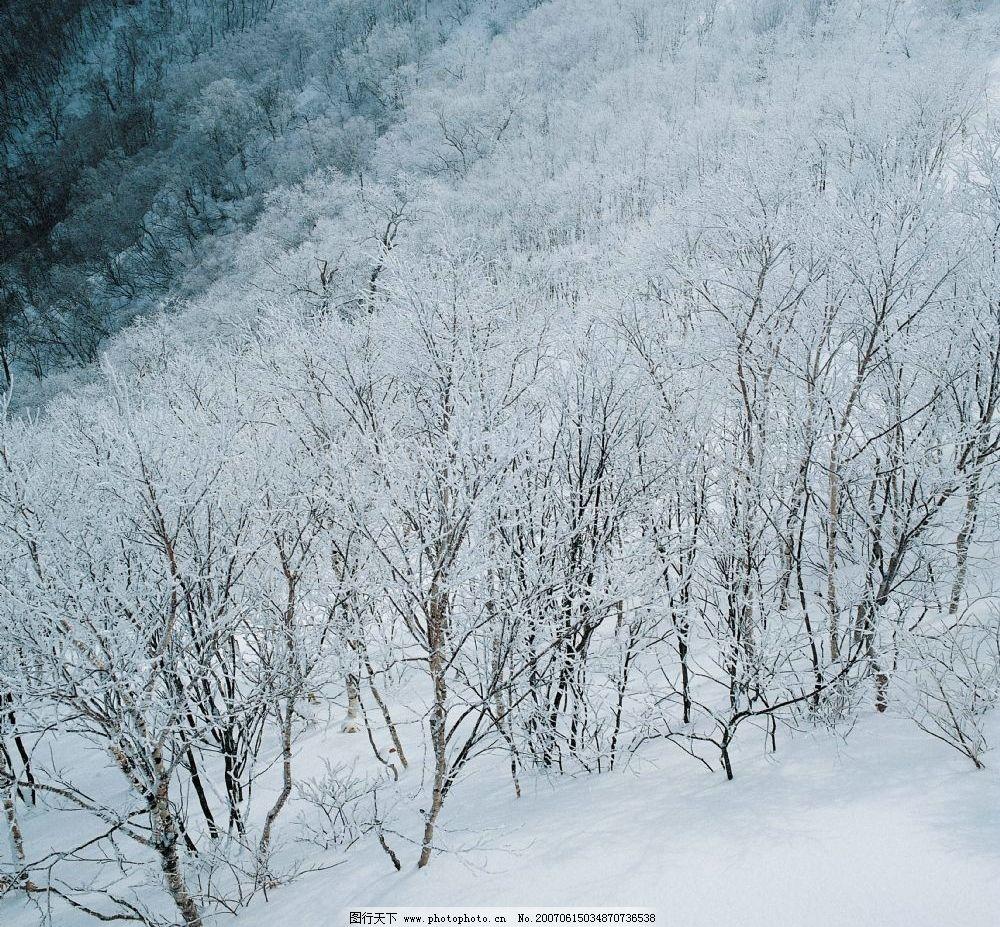 高山雪景 冰天雪地 银装素裹 冰雪图片 雪景壁纸 雪景桌面 雪景照片